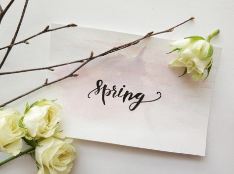 I have a love-hate relationship with spring