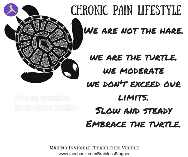 image of turtle and quote saying we are not the hare, we are the turtle