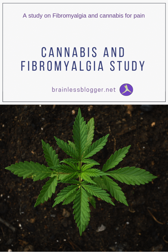 Cannabis and fibromyalgia study